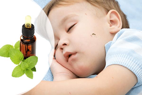 chống muỗi cho trẻ sơ sinh